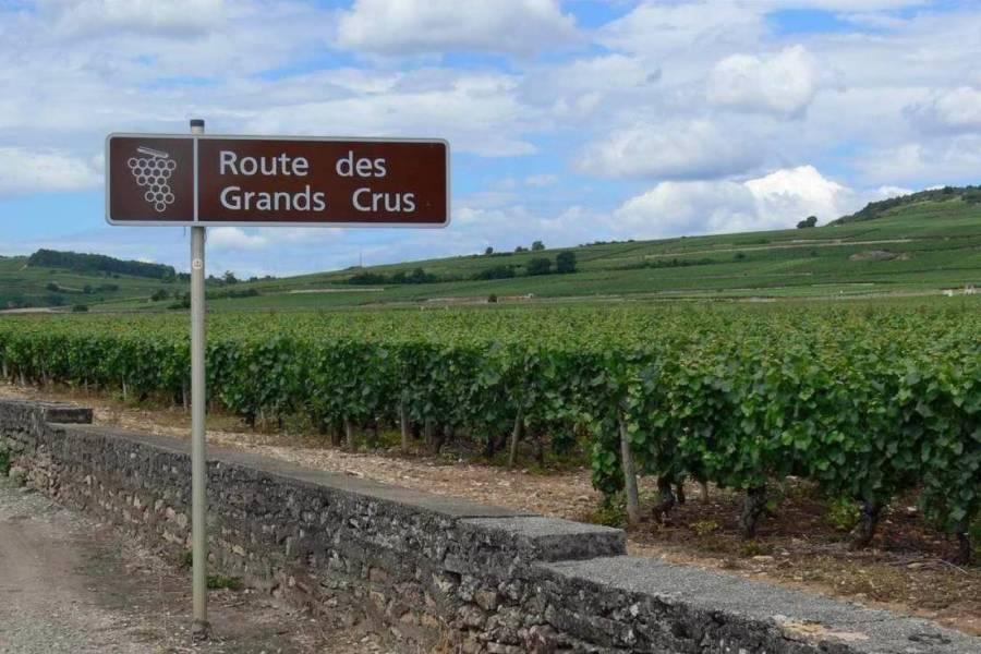 vin-bourgogne-chambre-hote_full